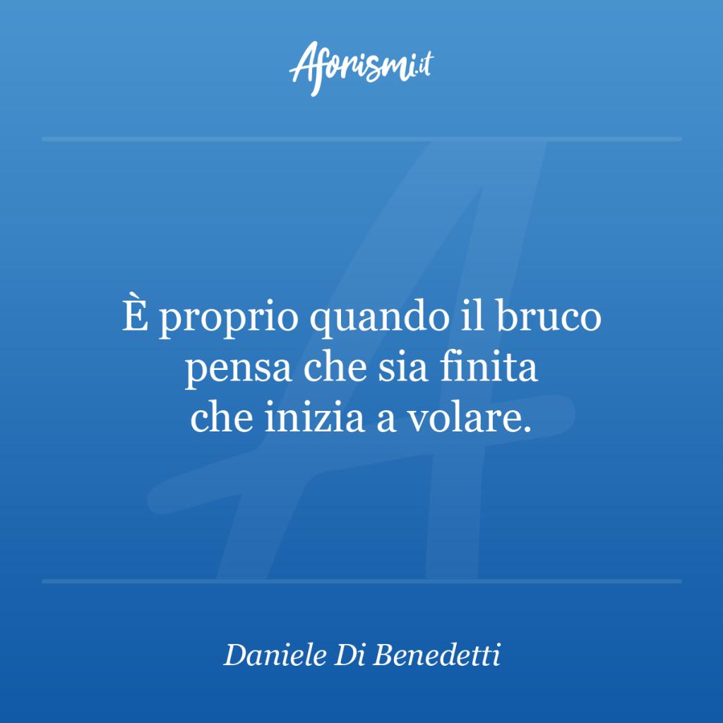 Aforisma Daniele Di Benedetti - È proprio quando il bruco pensa che sia finita che inizia a volare.